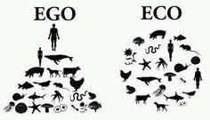 Cambiemos de mentalidad! #eco #reciclaaje #ecologia