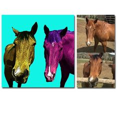 A custom portrait of two horses created for Hillary.  Hillary sent me several pictures of each horse. I selected the two best ones and combined them into one portrait.