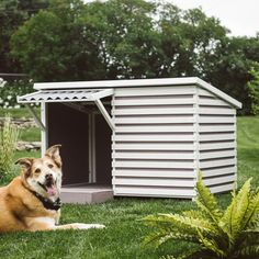 Archie Modern Dog House from Boomer & George - Design Milk Fancy Dog Houses, Modern Dog Houses, Cat Houses, Luxury Dog House, Dog Tumblr, Dog Milk, Diy Dog Toys, Dog Furniture, Outdoor Doors