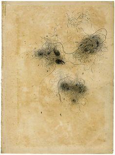 Olivia Jeffries: dust study, pencil on book page drawings Illustrations, Illustration Art, Digital Museum, Art Corner, Art Textile, Owl Art, Land Art, Artist Art, Painting & Drawing