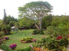 Gorgeous, Hotel Bougainvillea Costa Rica.