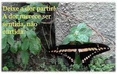 #dor #sentimento #partir #tempo #temporária #psicologia #psicóloga #NovaIguaçu #cognitivocomportamental #followme