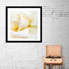 Discover «Closeup White Rose Fine Art», Numbered Edition Fine Art Print by Dreamframer - From $24.9 - Curioos