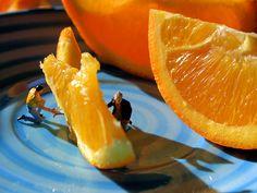 Orange Rinders