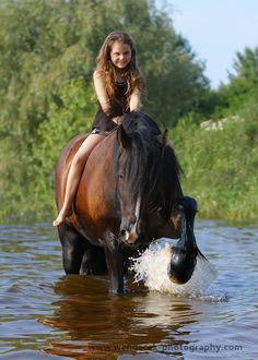 A lifetime moment capture on camera Horse Pictures, Funny Animal Pictures, Pretty Horses, Beautiful Horses, Animals Of The World, Animals And Pets, Horse Girl Photography, Horse Riding Clothes, Types Of Horses