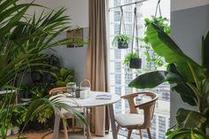 33 Ideas For Apartment Bohemian White Walls Bedroom Plants Decor, Plant Decor, Living Room Pillows, Living Room Decor, White Deck, White Plants, Aesthetic Rooms, Boho Aesthetic, White Bedroom
