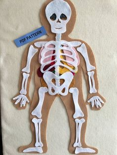 My Body, Make this Educational Felt Set with Bones and Organs, Montessori Inspired Educational Science Toy - PDF PATTERN ONLY - My Body, Make this Educational Felt Set with Bones and Organs, Montessori Inspired Educational Scien - Body Preschool, Preschool Science, Human Body Activities, Bodies, Human Body Unit, Science Toys, Fabric Markers, Felt Toys, Science Projects
