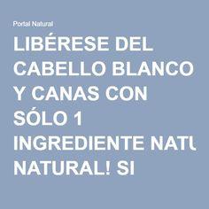 LIBÉRESE DEL CABELLO BLANCO Y CANAS CON SÓLO 1 INGREDIENTE NATURAL! SI FUNCIONA! - Portal Natural
