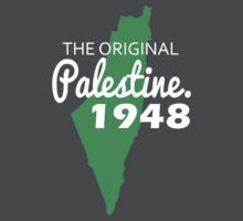 The original Palestine 1948 by darweeshq