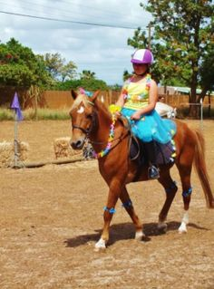A pony for a day 3July,1 day camp 3 July /3 day sleepover 3-5 July ,Fun and fresh air!Qualified tuition on riding and horse care .The children will ... | 66989898