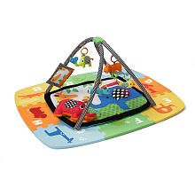 Infantino Infant and Toddler Activity Gym