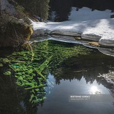 RESERVE DE LA PIERREUSE (VD) Image Nature, Bertrand, River, Outdoor, Environment, Landscape, Photography, Outdoors, Outdoor Games