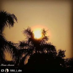 #Repost @18til_i_die with @repostapp  Follow back for travel inspiration and tag your post with #talestreet to get featured.  Join our community of travelers and share your travel experiences with fellow travelers attalestreet.com  SHINE on  #sun#silhouette#evening#sunshine#sunset#sunset_madness#sunsetporn…