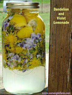 How to Make Dandelion and Violet Lemonade