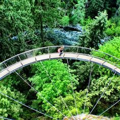 Capilano Suspension Bridge - gravity makes this a non-vertical arch structure Vacation Trips, Vacation Spots, Suspension Bridge Vancouver, The Places Youll Go, Places To See, Haida Gwaii, Just Dream, Adventure Is Out There, Places To Travel