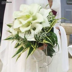 http://www.lemienozze.it/gallerie/foto-bouquet-sposa/img31708.html  Bouquet classico di calle bianche