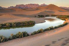Pasab wetland, Yazd, Yazd province, Iran (in Persian: تالاب پساب یزد، استان یزد, تصاویر از امیر حسن زاده) Credit: irandeserts.com/