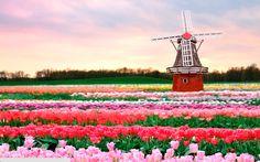 7 motivos pelos quais você precisa visitar a Holanda o quanto antes – Nômades Digitais