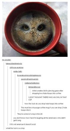 Oh bless the Americans who genuinely believed that some British man had had enough time to make a ginormous cup of tea and then proceed to drop two hula hoops in them to produce an image pf an owl.>>>> I AM ON OF THOSE AMERICANS THANKS YOU Funny Cute, Really Funny, Hilarious, Tumblr Stuff, Funny Tumblr Posts, Stupid Funny Memes, Funny Stuff, Random Stuff, Humor