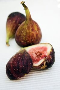 Texas Everbearing Fig Tree  good for zones 7-10  grows as large bush  $40 for fruiting size
