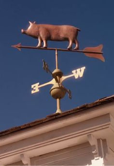 Charlottes Web, Weather Vanes, Little Pigs, Teacup Pigs, Piglets