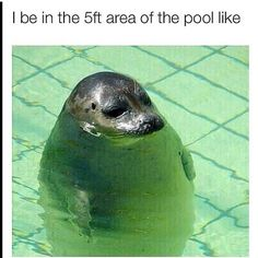 I be in the 5 ft. area of the pool like