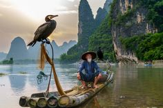 """I was strolling along the Li River in Xingping, Yangshuo, and saw this famous """"cormorant fishermen"""" while he was posing for a bunch of photographers. I knew this had been such a cliche and my ILCE-6300 + E16-70 were not the best gear for this, but I just couldn't resist the temptation."""