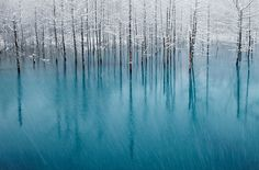"""The Blue Pond"" & by Kent Shiraishi; (Biei, Hokkaido, Japan) Honorable Mention for National Geographic 2011 Photo Contest. Photoshop, National Geographic Photo Contest, Beautiful Places, Beautiful Pictures, Amazing Places, Trees Beautiful, Amazing Things, Beautiful Landscapes, Foto Art"