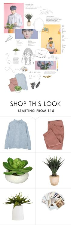 """""""Z i c o  -  S h e ' s  a  b a b y  🍪"""" by nickianna ❤ liked on Polyvore featuring MANGO, Frontgate, CB2, Plane and Chronicle Books"""