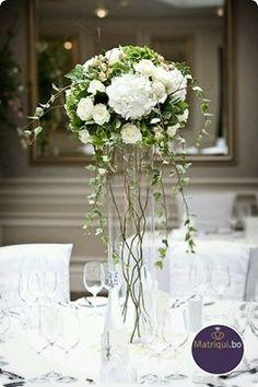 No hay algo más variado para el día de tu boda como las opciones para tus arreglos florales y centros de mesa. Toma en cuenta estos detalles antes de elegir: http://www.matriqui.bo/consejo_proc.asp?