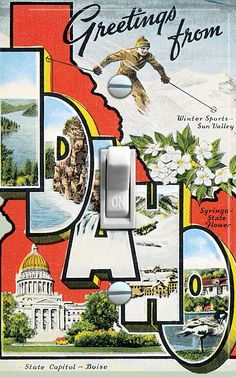 IDAHO Vintage Travel Poster Switch Plate (single)  - - FREE SHIPPING - - by VintageSwitchPlates on Etsy
