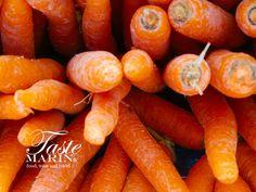 Taste Marin carrots ...