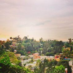 .@edroste (Ed Droste) s Instagram photos | Webstagram - the best Instagram viewer