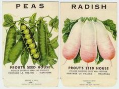 old seed packets - Google Search