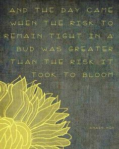 """""""And the day came when the risk to remain tight in a bud was greater than the risk it took to bloom."""" ~ Anais Nin Love this quote! Now Quotes, Great Quotes, Quotes To Live By, Inspirational Quotes, Awesome Quotes, Daily Quotes, Motivational Quotes, Time Quotes, Funny Quotes"""
