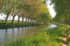 Photo of the Week: The Beautiful Tree-Lined Canal du Midi