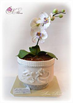 Орхидея в горшке) - Кондитерская - Babyblog.ru