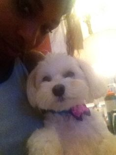 Via Serena Williams 11/1/13 How cute is my Lauerlei? I love her. #serenafriday .http://t.co/N8sFZGfSM2.. #Adorable
