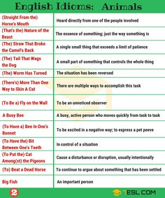 2000+ Common English Idioms and Their Meanings - 7 E S L