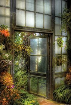 What beckons us to go through this door? A mystery awaits us, paradise perhaps, certainly something that will be a treat for the eyes. This green house has charm and grace, it would make a lovely entrance to a garden.