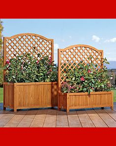 using plants as patio privacy screens? | Product Reviews and Ratings - Patio Planters - Self-Watering Trellis ...