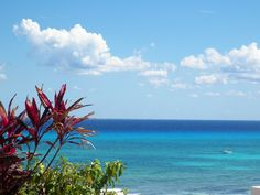 How many colors can you see in the Caribbean Sea? Playa del Carmen Mexico.