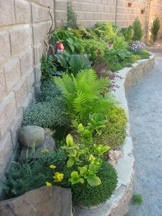 Garden Landscaping With Stones Inspiration desert garden landscaping interior design. Desert Landscaping Backyard, Backyard Garden Design, Landscaping With Rocks, Landscaping Plants, Landscaping Ideas, Backyard Ideas, Garden Ideas, Outdoor Ideas, Mailbox Landscaping