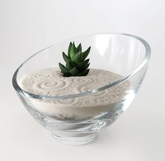 Mini Succulent Zen Garden by wendiland on Etsy