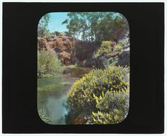 Picture of a landscape with a pond.