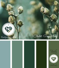 150 Chalet Green Hue by Asmalina © 2012 Sorbetcolour ™