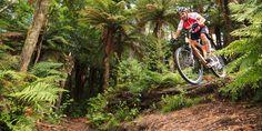 Mountain biking Rotorua. Photo / Supplied