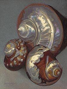 Sea Shells, original painting  ©  by Alex Gnidziejko