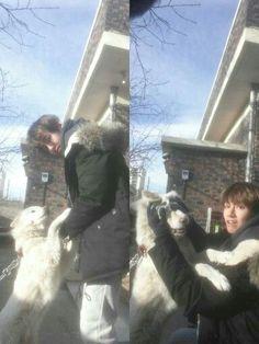 Taehyung's pet