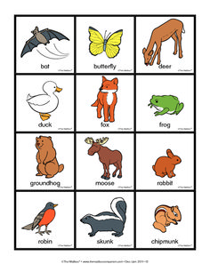 nocturnal animals preschool lesson plans 1000 images about day amp on 418